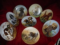 Field Puppies Series Collectible Plates in Phoenix, Arizona