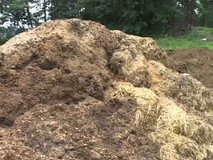 Horse/Chicken/Sheep/Bunny Manure in Ramstein, Germany