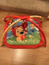 Baby play mat in Brookfield, Wisconsin