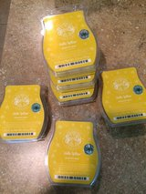 Scentsy Hello Yellow in Spring, Texas