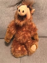 Alf stuffed animal in Fort Campbell, Kentucky
