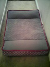 Large orthopedic dog bed (new) in Quantico, Virginia