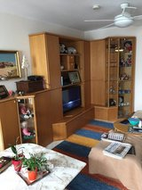 Living room shelving unit.  Lighted displays on sides.  LOTS of storage in Wiesbaden, GE
