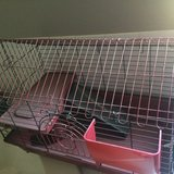 guinea pig/small animal cage in Joliet, Illinois