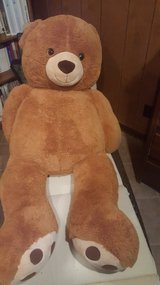 Giant Teddy Bear in Orland Park, Illinois