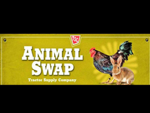 Animal/poultry swap at Deridder Tractor Supply this Saturday 7/22 in DeRidder, Louisiana