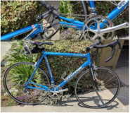 Cannondale Road Bike, built with Campagnolo / Campy Components in Miramar, California