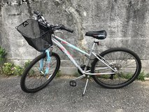 Woman's bike in Okinawa, Japan