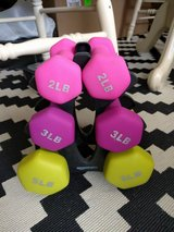20-Pound Dumbbell Set with Stand in Ramstein, Germany