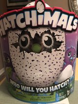 Hatchimals in Dothan, Alabama