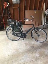 Real Dutch Bike in Glendale Heights, Illinois