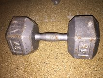 2- 45 lb weight dumb bells in Naperville, Illinois