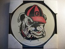 UGA Framed Record- RARE- 1982 VINTAGE UGA RECORD in Beaufort, South Carolina