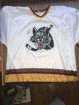 Several Wolves Jerseys in Elgin, Illinois
