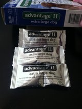 Advantage II - Topical Treatment for Fleas and Lice in Okinawa, Japan