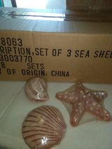 LIQUIDATION 16 sets of sea shell candles in Aurora, Illinois