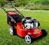 LOOKING FOR A Lawn mower,Lawnm in Ramstein, Germany