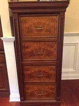 Filing cabinet in Naperville, Illinois