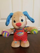 LIKE NEW Fisher-Price Laugh & Learn Dance & Wiggle Teaching Puppy/Dog Toy-(Numbers/Letters) in Kissimmee, Florida