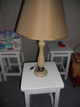 Table lamp in Orland Park, Illinois