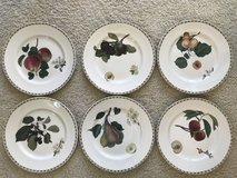 Royal Horticultural Society – Hookers Fruit - 6 China Dinner Plates in Lockport, Illinois