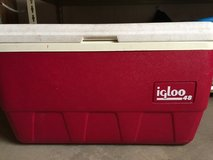 Igloo cooler in Naperville, Illinois