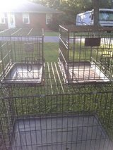Dog Crates in Fort Knox, Kentucky