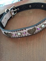 XL New Woof Wear Dog Collar in Las Cruces, New Mexico