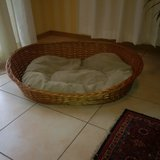 Dog Basket and Bed $25 in Ramstein, Germany