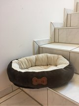 Pet Bed in Ramstein, Germany
