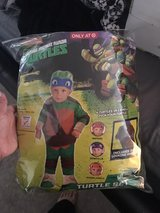 ninja turtle costume Worn Once hat never worn has all 4 colors in Fairfield, California