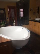 HIGH END BATHTUB WITH TUB FILLER & MATCHING SINKS/FAUCETTS (Oceanside) in San Diego, California