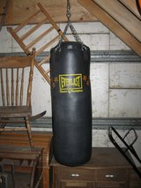 Punching Bag in Chicago, Illinois