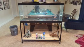 Complete Freshwater 55 Gallon Set up in Rolla, Missouri