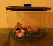 hermit crab cage in Fort Campbell, Kentucky