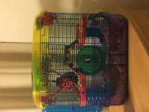 Dwarf Hamster + cage and food + ball in Camp Pendleton, California