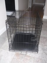 Dog Crate in New Lenox, Illinois