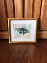 Framed Watercolor Butterfly Artwork in Alamogordo, New Mexico