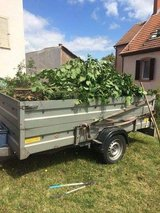 YARD CARE SERVICE &FREE ESTIMATE in Ramstein, Germany