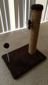 cat scratching post. in Tacoma, Washington