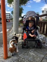 PPU**double stroller sit and stand in Okinawa, Japan