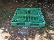 Plastic Pallet in Okinawa, Japan