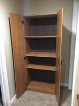 Wood Storage Cabinet in Naperville, Illinois