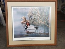 Duck Unlimited Limited Edition Print in Fort Leonard Wood, Missouri