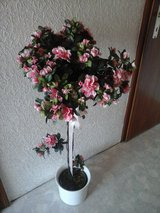 Artificial azalea tree with overhead pot in Baumholder, GE