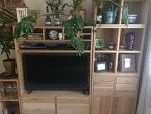 Entertainment center with shelves in Baumholder, GE