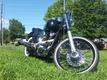 1999 Harley Softail Custom FXSTC in Clarksville, Tennessee