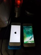 IPhone 5 in Glendale Heights, Illinois