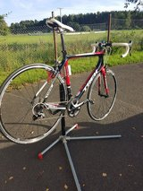 Trek Carbon Fiber Road Bike in Schweinfurt, Germany