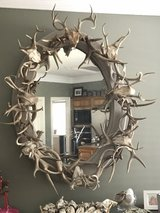Authentic Antler Mirror in Kingwood, Texas